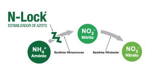 N-Lock estabilizador de Azoto – protege o seu investimento